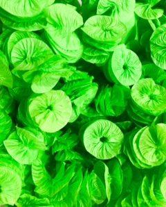 Verde Claro